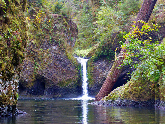 Punchbowl Falls from the banks of Eagle Creek