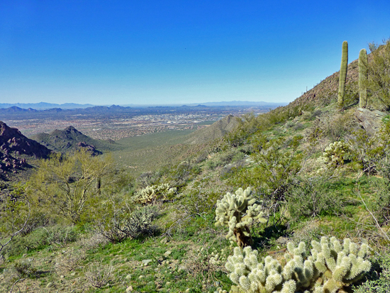 Views of the Sonoran Preserve from Bell Pass - 3178'
